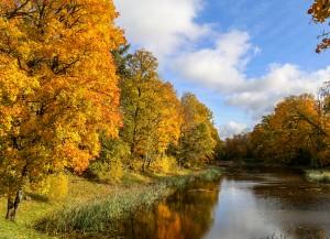 Kabile rotājas rudens zeltā