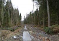 Kabiles meža īpašnieku ievērībai